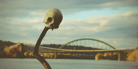 place of the skull
