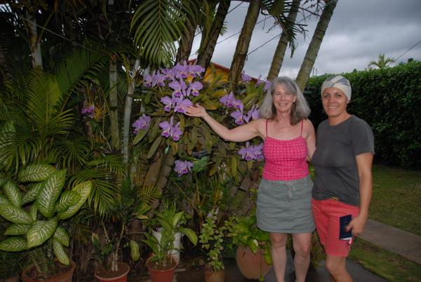 Diana Cuba photos 325