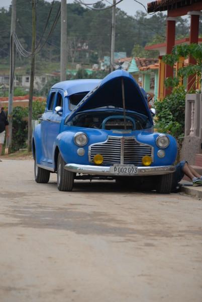 Diana Cuba photos 478