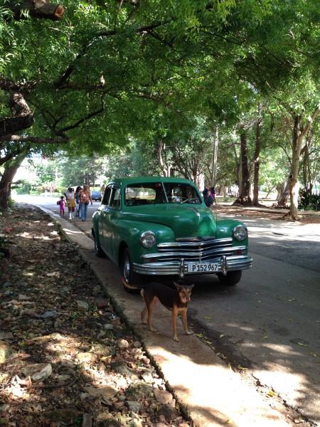 McClain Cuba photos 072