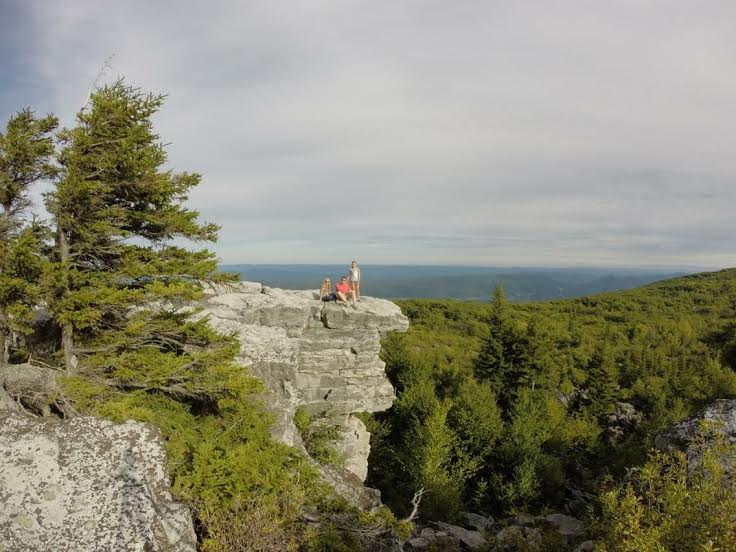 Dolly-sods
